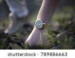 pavia  italy   december 13 ...   Shutterstock . vector #789886663
