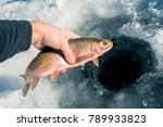 A Fisherman's Success On A Col...