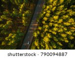 aerial view on pine forest ... | Shutterstock . vector #790094887