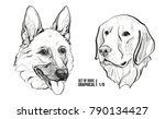 set of portraits of dogs.... | Shutterstock .eps vector #790134427