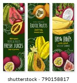 exotic tropical fruits banners... | Shutterstock .eps vector #790158817