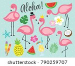 cute flamingo with tropical... | Shutterstock .eps vector #790259707