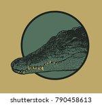 design t shirt print with... | Shutterstock .eps vector #790458613