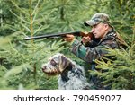 hunter with a german wire...   Shutterstock . vector #790459027