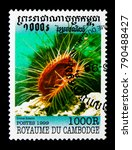 Small photo of MOSCOW, RUSSIA - NOVEMBER 24, 2017: A stamp printed in Cambodia shows Gaping File-shell (Lima hians), Molluscs serie, circa 1999