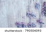 spring background with blooming ... | Shutterstock . vector #790504093