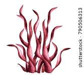 Watercolor Red Sea Plant Close...