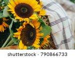 Sunflowers And Yellow Blum...