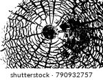 vintage effect grit texture.... | Shutterstock .eps vector #790932757