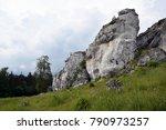rock formation in krakow... | Shutterstock . vector #790973257