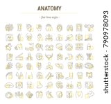 vector graphic set. icons in... | Shutterstock .eps vector #790978093