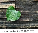 Green Heart From Nature....