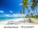 tropical beach with coconut palm | Shutterstock . vector #791123497