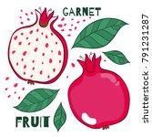 pomegranate illustration.... | Shutterstock .eps vector #791231287