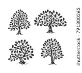 huge and sacred oak tree... | Shutterstock .eps vector #791300263