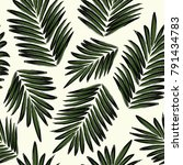 palm leaf print | Shutterstock . vector #791434783
