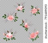 bouquet of roses | Shutterstock .eps vector #791689093