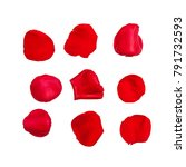 Stock photo nine red rose petals isolated on white with clipping path for easy extraction 791732593