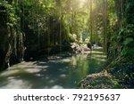 River In The Jungle.