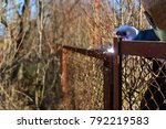 welder makes a fence in the... | Shutterstock . vector #792219583