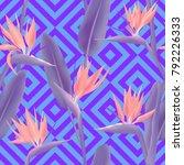bird of paradise tropical... | Shutterstock .eps vector #792226333