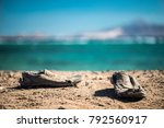 pair of old shabby shoes on the ... | Shutterstock . vector #792560917