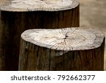 texture of the log | Shutterstock . vector #792662377