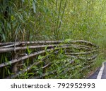 green and dry bamboo fence... | Shutterstock . vector #792952993