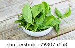 baby spinach in a white bowl on ...   Shutterstock . vector #793075153