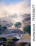 wildbeest crossing river in... | Shutterstock . vector #793328677