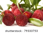 red bayberry on white background | Shutterstock . vector #79333753
