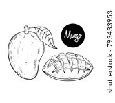 sketch style of manggo fruit on ...   Shutterstock .eps vector #793433953