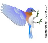 blue and white bird | Shutterstock .eps vector #79345267