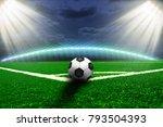 soccer  ball on the green field | Shutterstock . vector #793504393