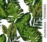watercolor seamless pattern...   Shutterstock .eps vector #793504843