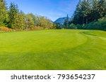 great looking golf course.   Shutterstock . vector #793654237