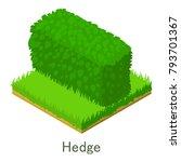 hedge icon. isometric... | Shutterstock .eps vector #793701367