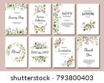 botanic card with wild flowers ... | Shutterstock .eps vector #793800403