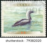 Small photo of CANADA - CIRCA 2000: stamp printed by Canada, shows Pacific loon, circa 2000