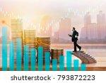 finance  profit  capital... | Shutterstock . vector #793872223