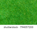 green lawn for background.... | Shutterstock . vector #794057203