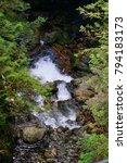 lynn canyon park. canada | Shutterstock . vector #794183173