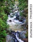 lynn canyon park. canada | Shutterstock . vector #794183923