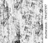 texture grunge monochrome.... | Shutterstock . vector #794197597