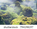 hot springs in national park... | Shutterstock . vector #794198197