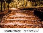 english park in tata  hungary | Shutterstock . vector #794225917