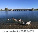 aspire park in doha city  qatar. | Shutterstock . vector #794274397