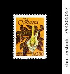 Small photo of MOSCOW, RUSSIA - JANUARY 2, 2018: A stamp printed in Ghana shows Yellow Arum (Amorphophallus flavovirens), Tourism serie, circa 1999