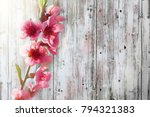 a spring pink flowers on wood... | Shutterstock . vector #794321383