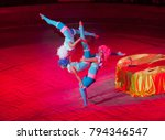 Performance of acrobats in the...